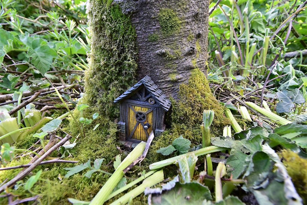 A Fairy Door on the Woodland Trail