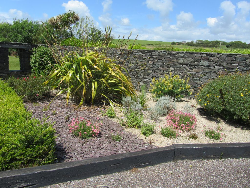 A new area for rock roses and geraniums in the front courtyard of Ballynoe House