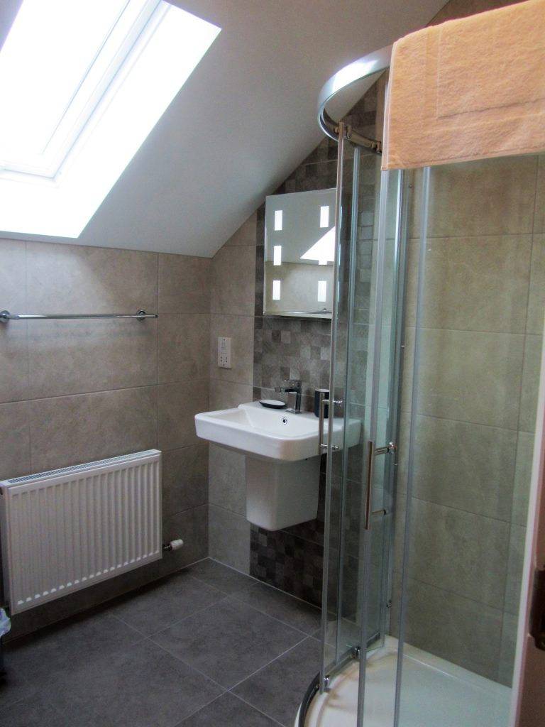 The Loft Bedroom En-suite (1 Ballynoe Mews )