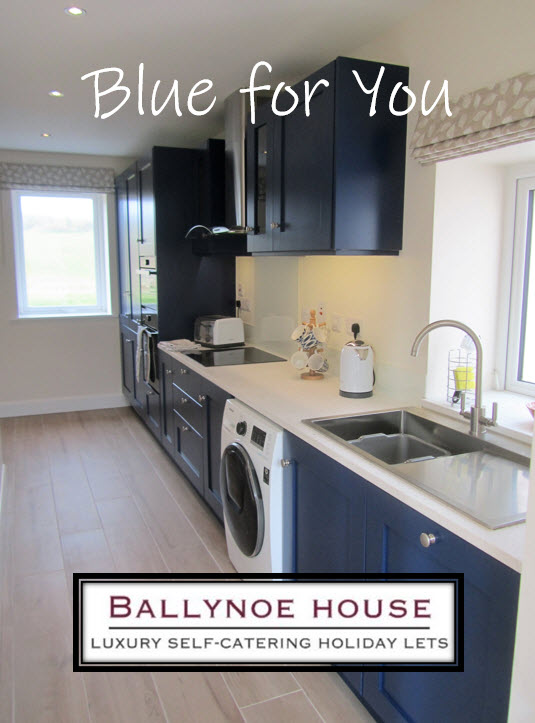 Blue For You - The Galley Kitchen in 1 Ballynoe Mews