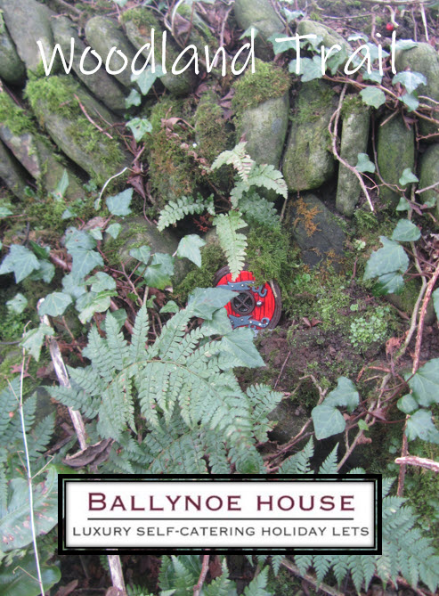 Ballynoe House has a Woodland Trail with Fairy Doors